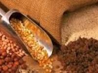 Voeding (zaden en pellets)