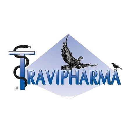 Travipharma Knoblauch und Zwiebel