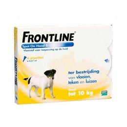 Frontline Le 6 place