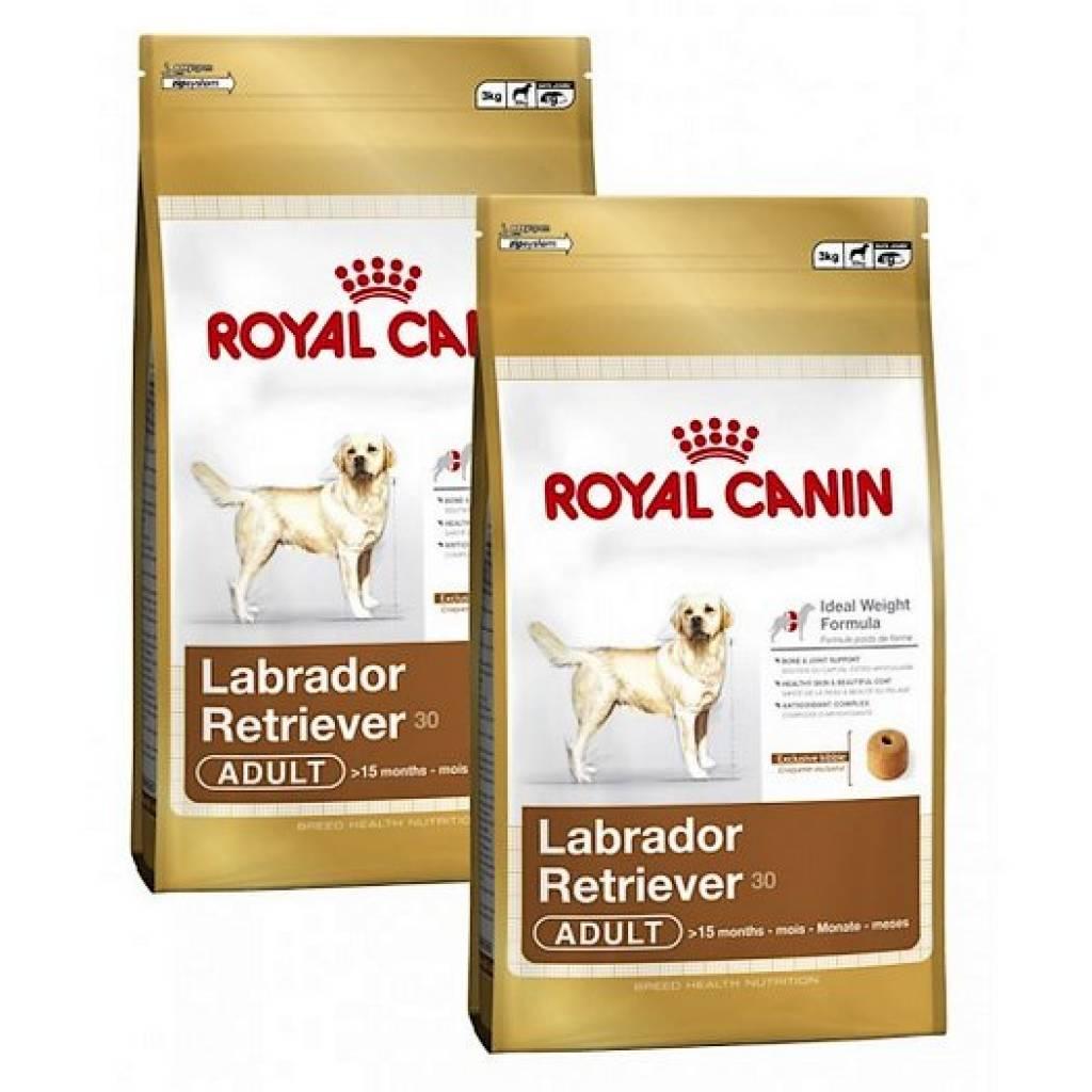 Royal canin breed labrador retriever 30 hundefutter