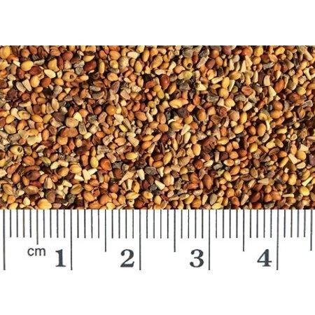 Kleesamen (1 kg)