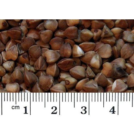 Buchweizen (1 kg)