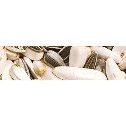 Teurlings 237 - Papegaai basis (10 kg)