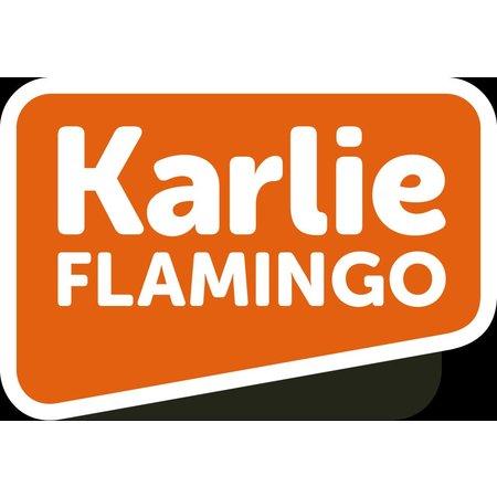 Flamingo Spielzeug Holz mit drei schwere Elemente
