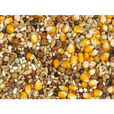 Vanrobaeys Mausermischung yellow Cribbs mais (Nr. 6)