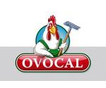 Ovocal