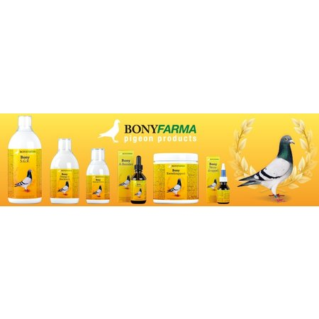 Bony Omega 3 Flugöl (500 ml)
