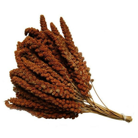 Chinese red millet (Box of 15 kg)