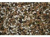 Sprouted seeds for parakeets (1 kg)