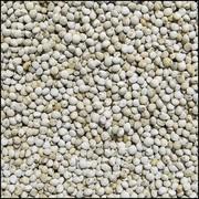 Perilla Blanc (15 kg)