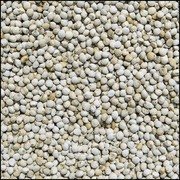 Perilla Weiß (15 kg)