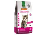 Biofood NCF Kitten