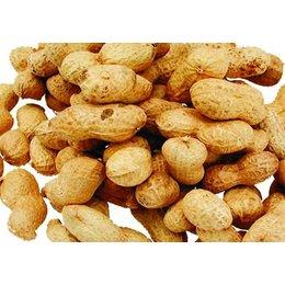 Erdnüsse mit Schale (10 kg)