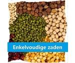 Saatgut (Einzelfuttermittel)