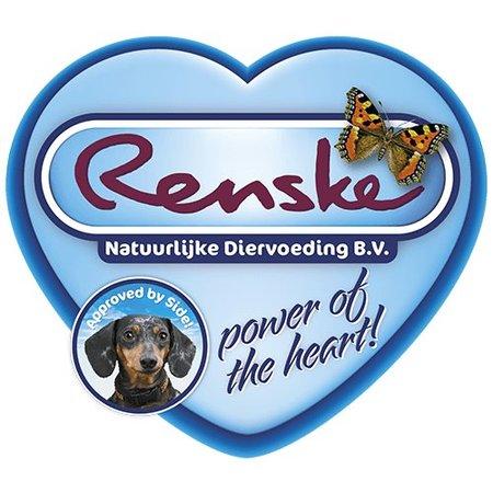 Renske M.O.P. Huhn & Reis