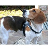 Tre Ponti Liberta dog harness