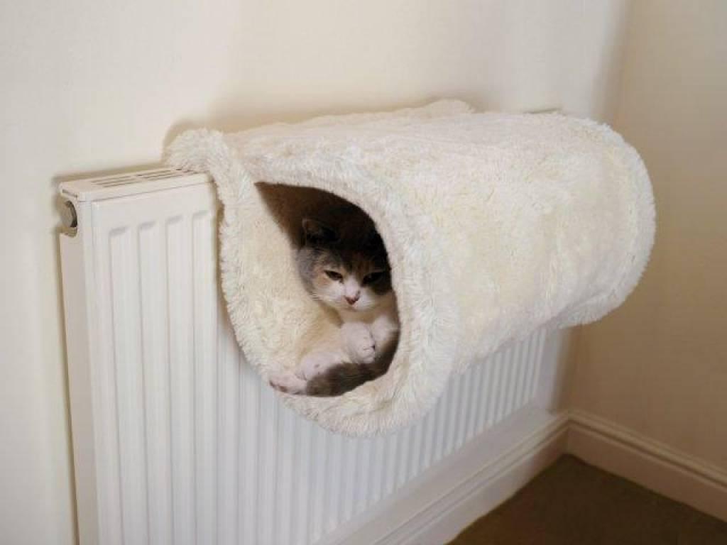 Тёплый дом для кошки своими руками 71