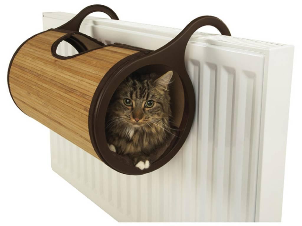 Best Cat Food For Indoor Outdoor Cats