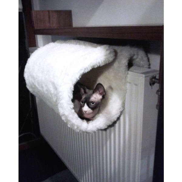Luxury Cat Bed and Tunnel - Hangmand
