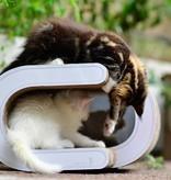 Cat-on Vague XL