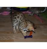 Kitty Boinks en Super Boinks