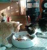 Lucky-Kitty Ceramic Cat-Bowl (2 maten)