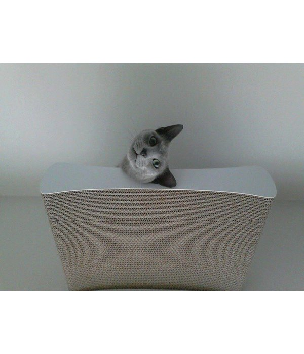 Cat-on Tablet Wall White