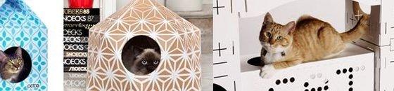 Katten en Karton