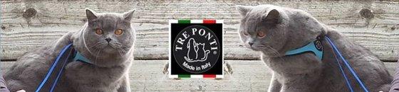Tre Ponti voor katten