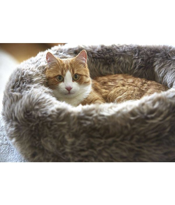 MiaCara Lana and Sherpa Cat Donut Bed (dogs allowed ;-)