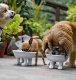 Pet Lifestyle Bowl