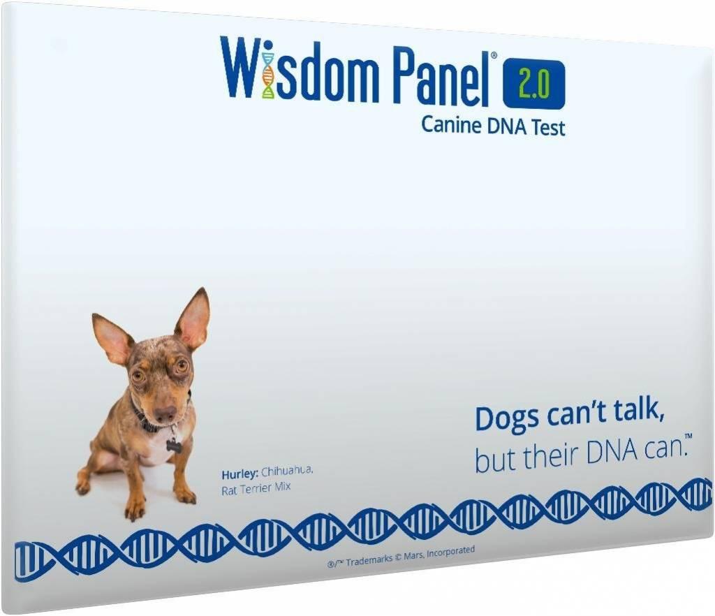 Wisdom Panel Dog Dna Reviews