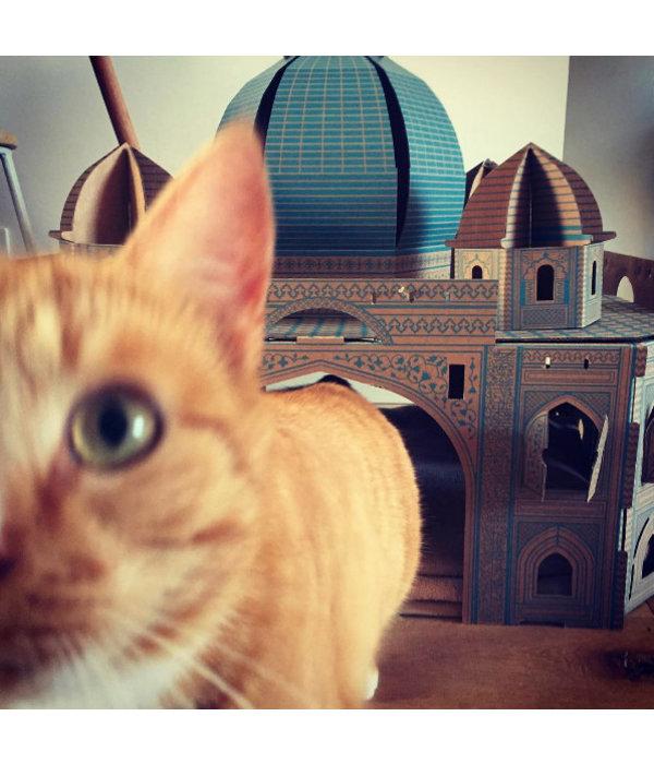Poopy Cat Taj Mahal Landmark Playhouse