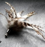 Tabby Tijger Royal Flutter