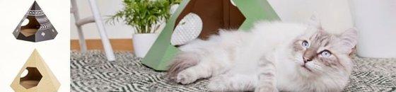 Doe mee en maak kans op een Cat TIPI
