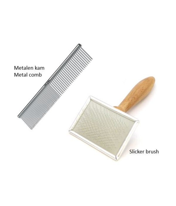 Slicker brush en Kam voor katten