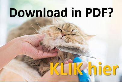 Download de tips vachtverzorging katten