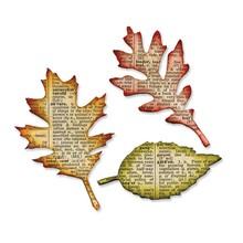 Sizzix Bigz Die Tattered Leaves (656927)