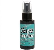 Ranger Distress Spray Stain Evergreen Bought (TSS42259)
