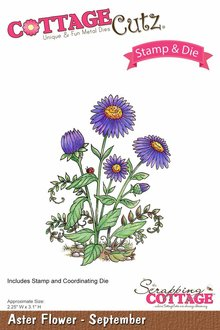 Scrapping Cottage CottageCutz Aster Flower - September (CCS-001)