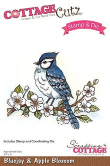 Scrapping Cottage CottageCutz Stamp & Die Bluejay & Apple Blossom (CCS-031)