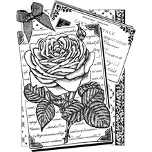 Crafty Individuals Unmounted Rubber Stamp Rambling Rose (CI-470)