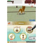DS Used: Nintendogs: Labrador & Friends