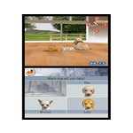 DS Used: Nintendogs: Dachshund & Friends