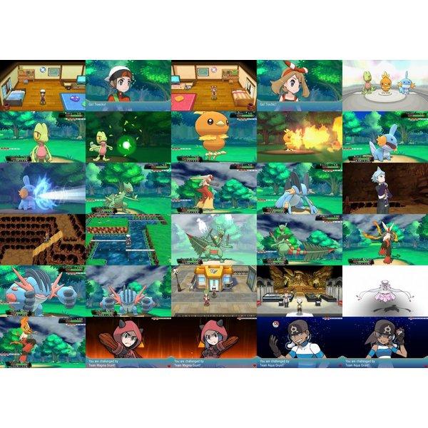 3DS Used: Pokémon Omega Ruby