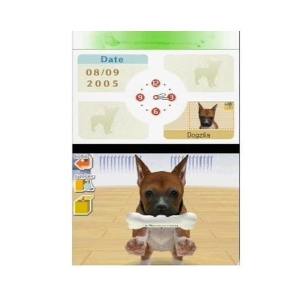 DS Used: Nintendogs Chihuahua