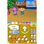 DS Used: Animal Crossing Wild World
