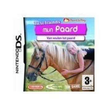 DS Best Friends Mijn Paard kopen