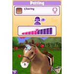 DS Used: Pony Friends 2