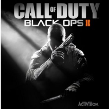 PC Call of Duty Black Ops 2 Steam Key